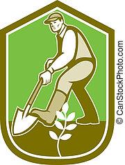 jardineiro, landscaper, cavando, pá, caricatura