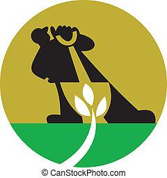 jardineiro, landscaper, com, pá, cavando, planta