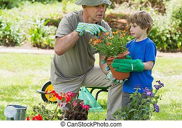 jardinería, aduelo, ocupado, nieto