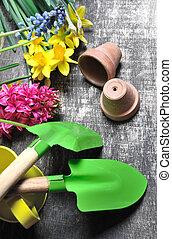 jardinería, conjunto, para, primavera