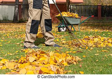 jardinería, en, otoño
