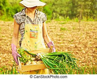 jardinier, fonctionnement, heureux