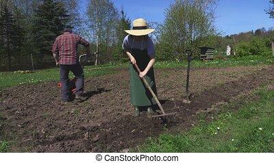 jardiniers, été, champ