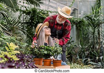 jardiniers, horticulture, beau, portrait, fonctionnement, personnes agées, amour, jointure, autre, dépenser, chaque, concept., orangerie, temps, regarder, jardinage, pots fleurs, couple