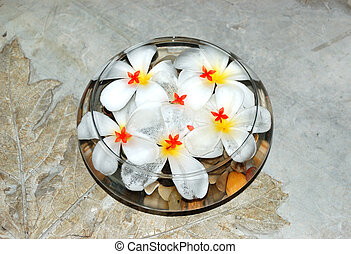 Jasmin flowers as SPA decoration, Bentota, Sri Lanka