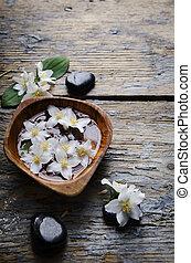 jasmine, blomster