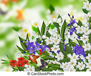 jasmine flowers, iris and lily of the valley