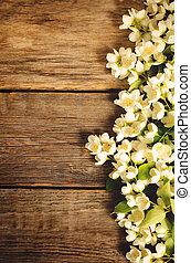 Jasmine flowers on a dark wood background. toning. selective...