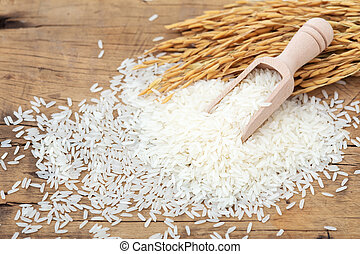 Jasmine rice and paddy