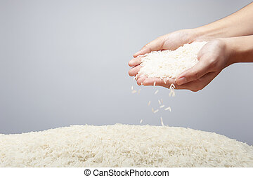 rice holding in hands