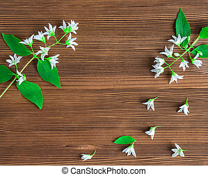 jasmine spring flowers frame