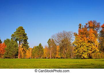 jasný, autumn den
