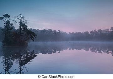jasny, las, wschód słońca, jezioro