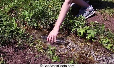 jasny, mały, zapas, woda butelka, trzęsie się, potok, pełny, las, siła robocza, picie, powolny, samica