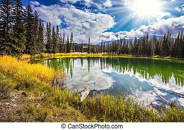 jaspe, canadá, día soleado, parque nacional