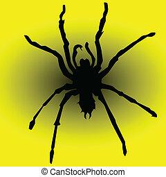 jaune, araignés, illustration