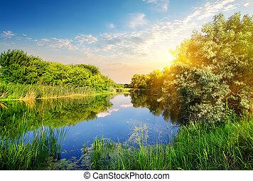 jaune, coucher soleil, sur, rivière
