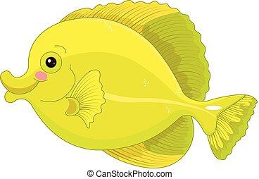 jaune, fish, saveur forte