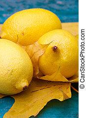 jaune, nature morte, citrique