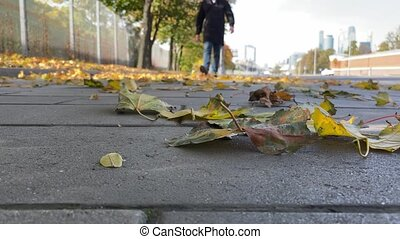 jaune, orange, donner coup pied, leaves., homme, concept., ...