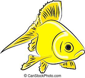 jaune, vecteur, fish, blanc, illustration, arrière-plan.