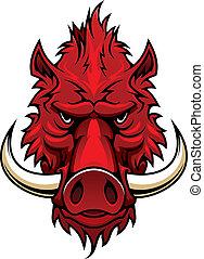 javali, cabeça, vermelho, mascote