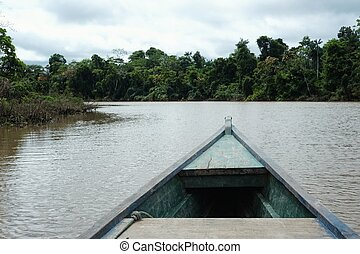 canoeing on the remote Itaquai river far from any civilization