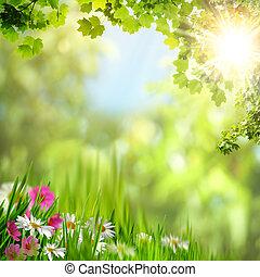 javor, leaves., abstraktní, blbeček, grafické pozadí, jako,...