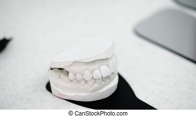 Jaw model in dental office clinic