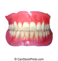 Jaw. Tooth jaw - Jaw. Tooth jaw. Vector illustration. 10 eps...