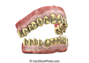 Jaw with golden teeth isolated on white background