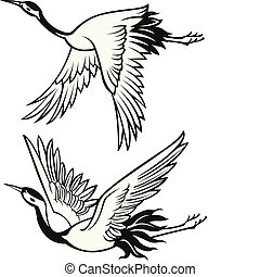 jeřáb, ilustrace