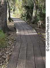 Jean Lafitte Preserve - New Orleans area, Louisiana
