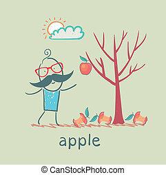 jeden, drzewo, jabłko, człowiek, stoi