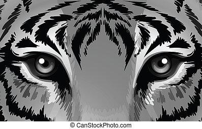 jeden, tiger, s, mazaný, dírka