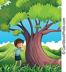 jeden, young sluha, u, ta, obrovský, strom