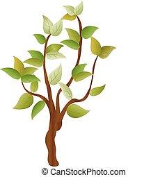 jednorazowy, drzewo