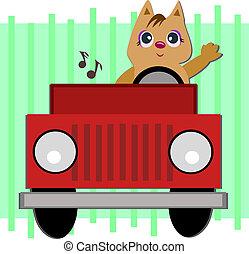 jeep, gato