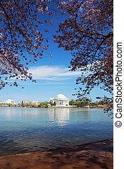 jefferson, 国民 記念, 湖, 光景, washington d.c.
