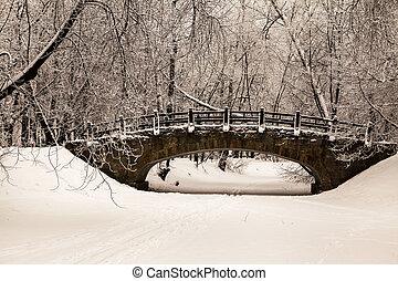 jeges, megkövez, gyönyörű, napnyugta, hó, öreg, napok, ...