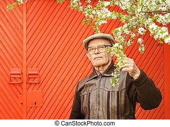 jego, ogród, starszy człowiek