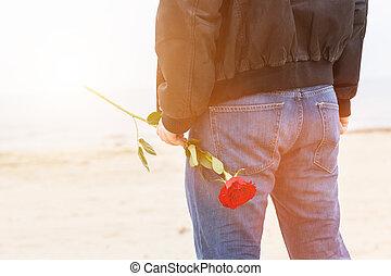 jego, romantyk, za, róża, love., wstecz, usługiwanie, data, plaża, człowiek