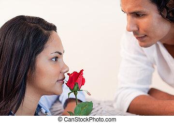 jego, właśnie, gave, samiec, róża, sympatia