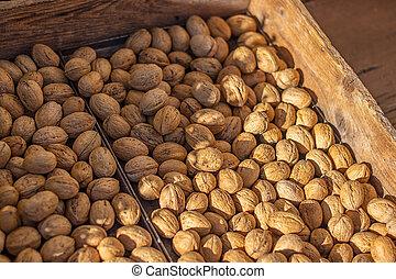 jejich, vlaškí ořechy, lastury