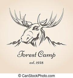 jel, tábor, erdő