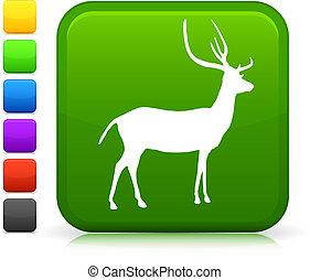 jeleń, ikona, na, internet, guzik