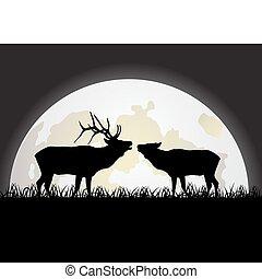 jeleń, przeciw, księżyc