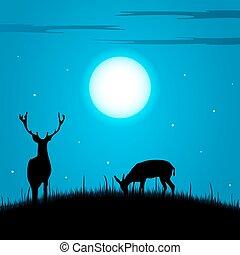 jelen, a, srna, během, ta, úplněk, grafické pozadí
