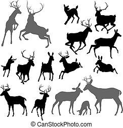 jelen, animální, silhouettes