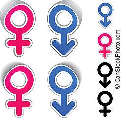 jelkép, vektor, hím, női